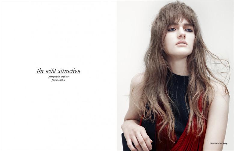 Dress / Stella McCartney