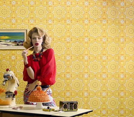 Vintage housewife  1